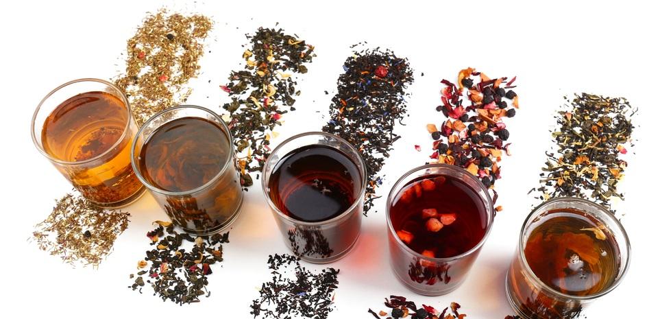tea drinker paradise